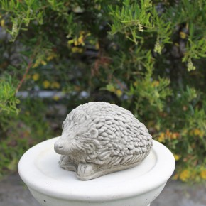Hedgehog Small CDSM09 - $19.50