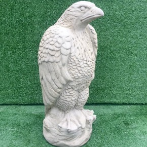 Large Eagle CDAN31 - $155.00