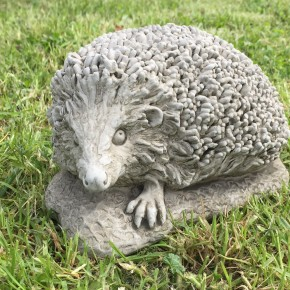Hedgehog Baby CDWL14 - $59.00